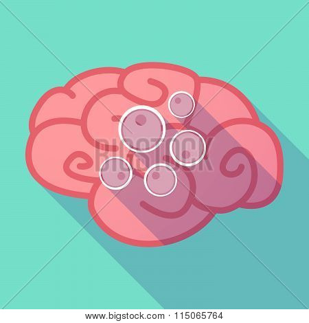 Long Shadow Brain With Oocytes