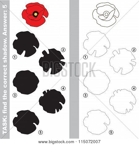 Poppy. Find true correct shadow.