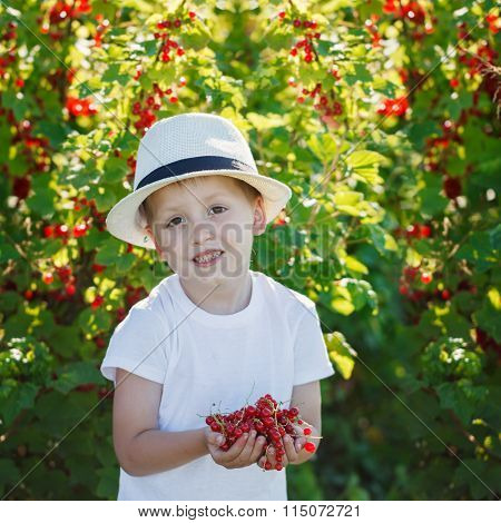 Happy little boy holding a red currant  in a garden