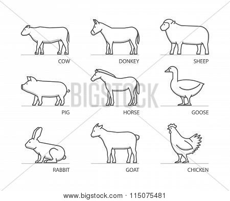 Linear Set Of Farm Animals. Vector Silhouettes Animals Isolated