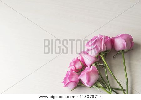 Interior furnishings beauty pink flowers on white background