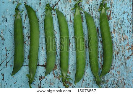 Pods of green peas lie ranks on blue wooden background