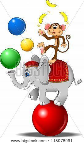 Elephant And A Monkey