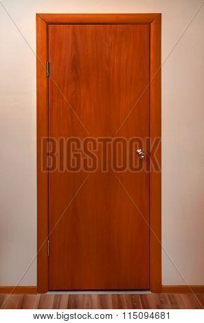 Wooden Door With Metal Pen