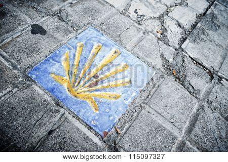 Santiago shell close up in Jaca, Huesca, Aragon, Spain.