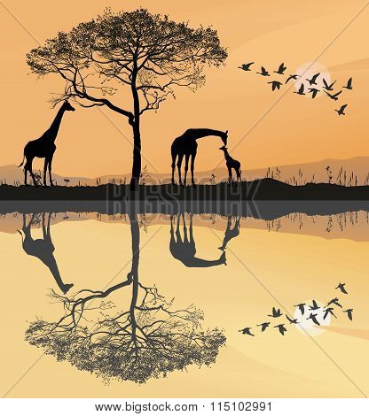 Savana With Giraffes.eps