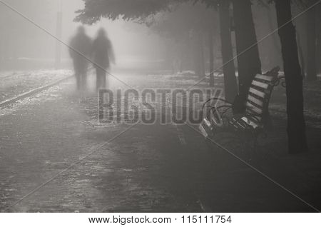 Two people walking on the road in foggy park