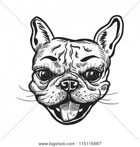 Funny hand-drawn french bulldog portrait. Vector illustration.