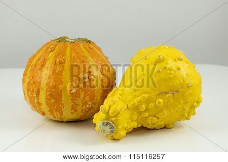 Yellow And Orange Gourds