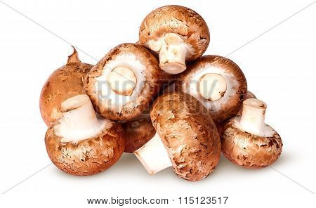 Pile Of Fresh Brown Champignon Top View
