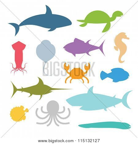 Vector icons set of sea marine fish and animals. Shark, squid, octopus, sawfish, hedgehog, saw, crab, dolphin, killer whale, whale, clownfish, sea horse, turtle, stingray, moray. Sea wild fish