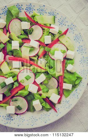 Vintage Photo Of Salad With Feta Cheese, Lettuce, Radish