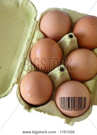 Coded Egg