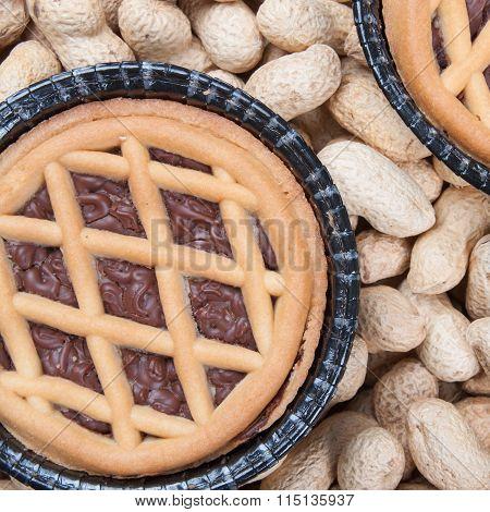 Chocolate And Nut Mini Tart