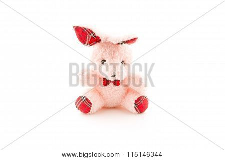 Pink bear doll on white background.