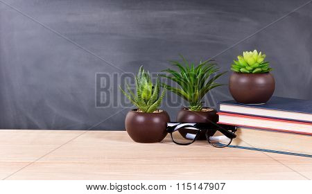 Student Desktop With Green Plants And Books With Blank Blackboard In Background