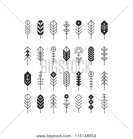 Vector line feathers and arrows