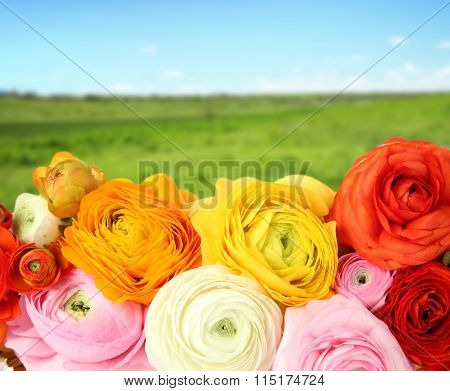 Beautiful boquet  on nature  background