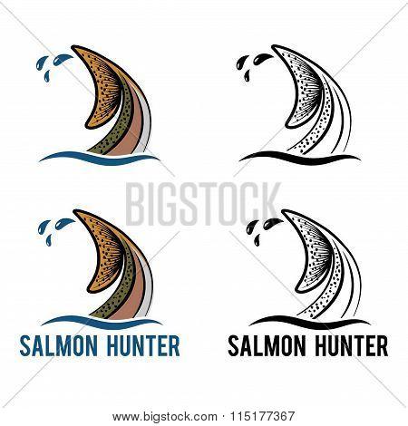Tail Of Salmon Illustration