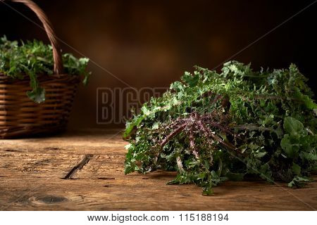 Fresh Green Leafy Vegetable On A Kitchen Bench.