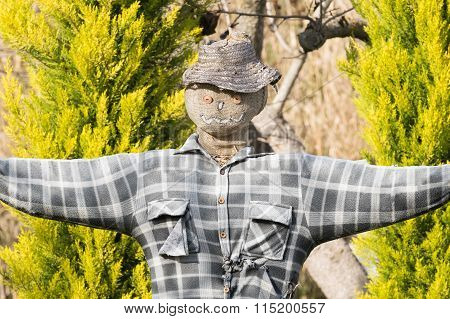 Close up of a scarecrow with buttons and a t-shirt.