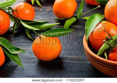 Fruit Tangerine