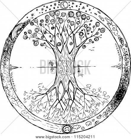Yggdrasil: the celtic tree of life vector