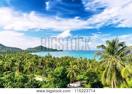 Travel Vacation Background - Koh Tao, Thailand