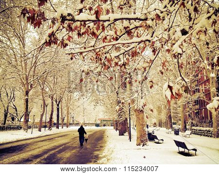 walking alone in winter