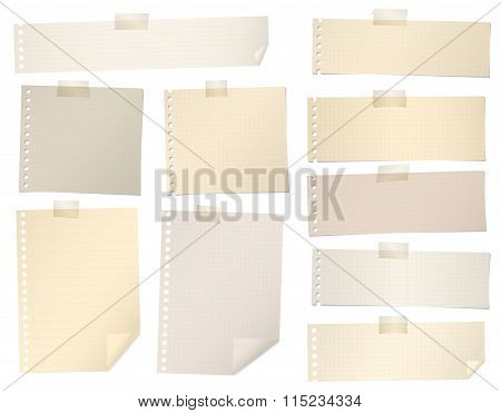 Pieces of brown lined, grid note paper with adhesive tape