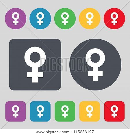 Female Icon Sign. A Set Of 12 Colored Buttons.