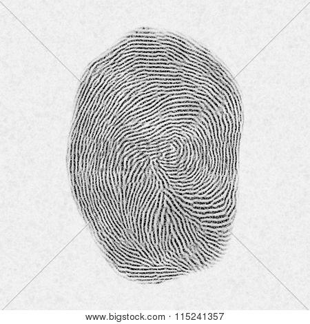 fingerprint pattern blur isolated on white