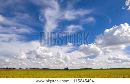 Expanse of Sky Over Fields of Harvest