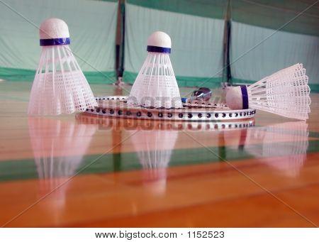 Indoor Badminton