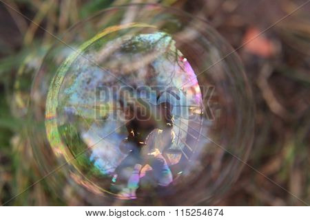 Photographer inside the bubble