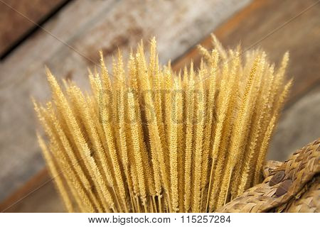 Sheaf of wheat in basket on wood background