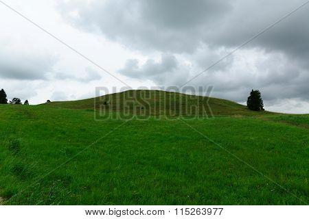 High Hill Overgrown With A Grass