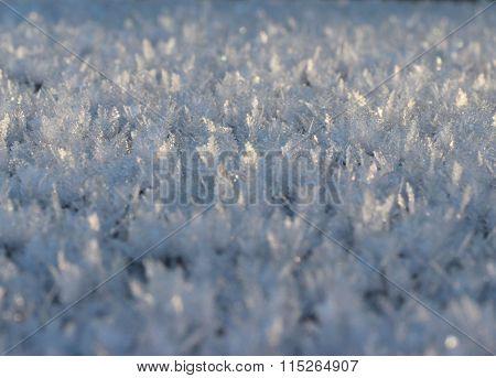 winter wonder background