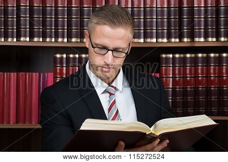 Lawyer Reading Book At Courtroom