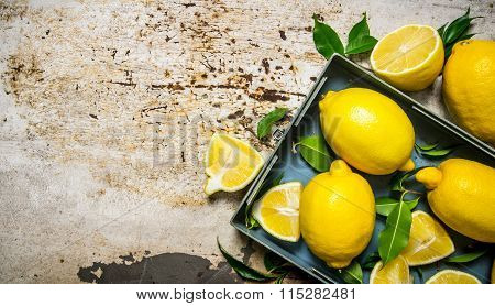 Lemons In A Metal Box With Leaves.  Free Space For Text .