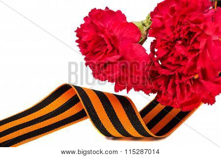 Carnation And St. George Ribbon Isolated On White