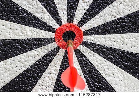 Darts Arrows In The Target Center Bulls Eye