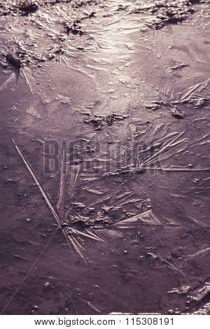 Structure Of A Frozen Puddle In The Sunlight