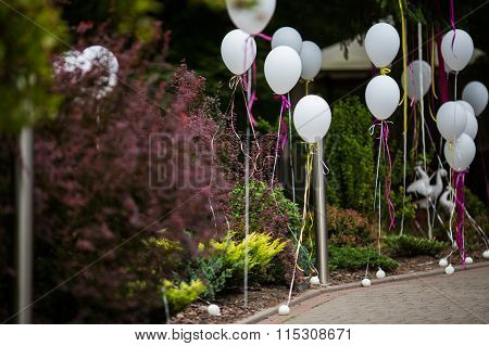 Elegant And Fun Decorated Path To Wedding Aisle With White Balloons And Colorful Ribbons