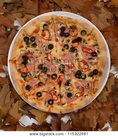 pizza with ham mozarella mushroom and olives withered leaves background
