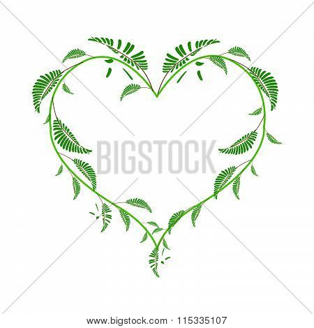 Beautiful Green Vine Leaves In A Heart Shape