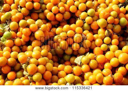 Rasbhari Or Cape Gooseberries