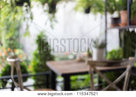 Abstract Blur Image, Decoration Living Room Interior Style Green Eco Environmental With Plant Nad Tr