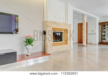 Large Fireplace In Posh Villa