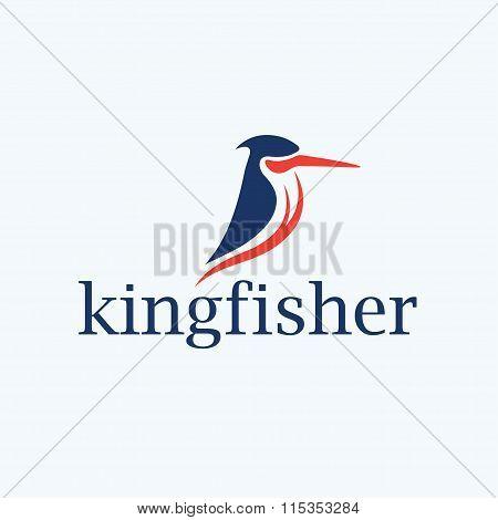 Kingfisher Bird Vector Design Template